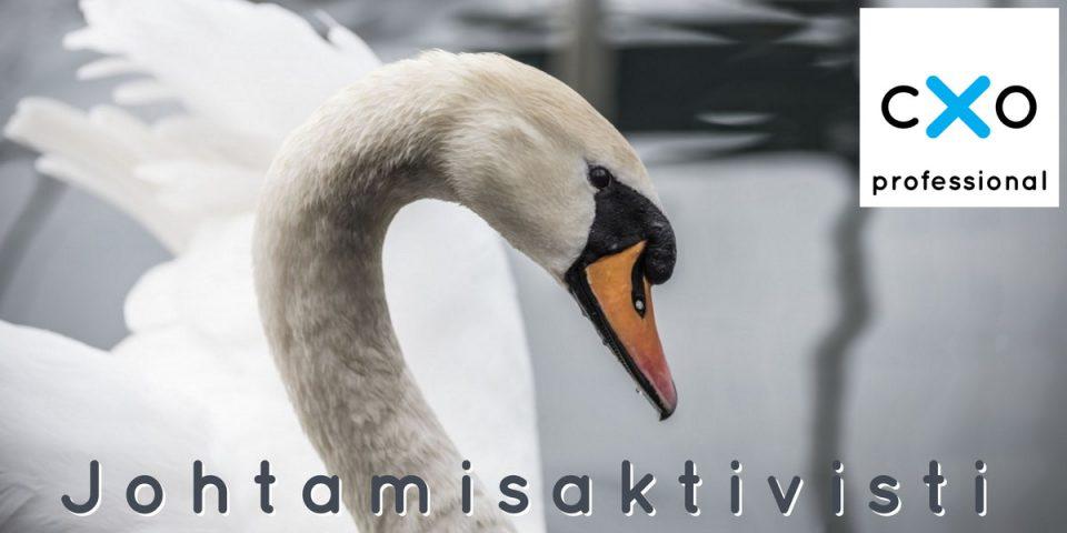 Johtamisaktivisti